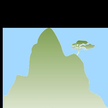 Green Mt. Medicine